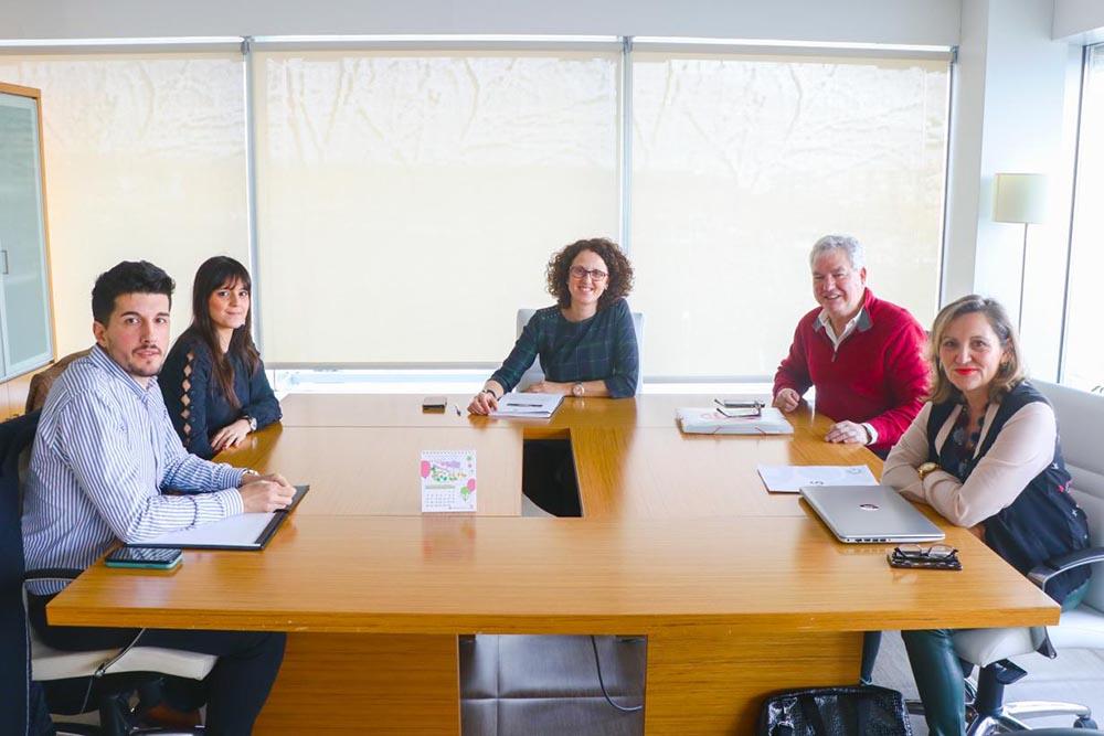 grupo de trabajo para impulsar el Año Internacional de la Enfermería y la Matron