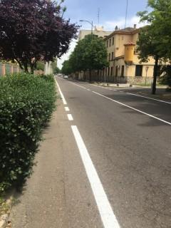 Talavera pintura vial1