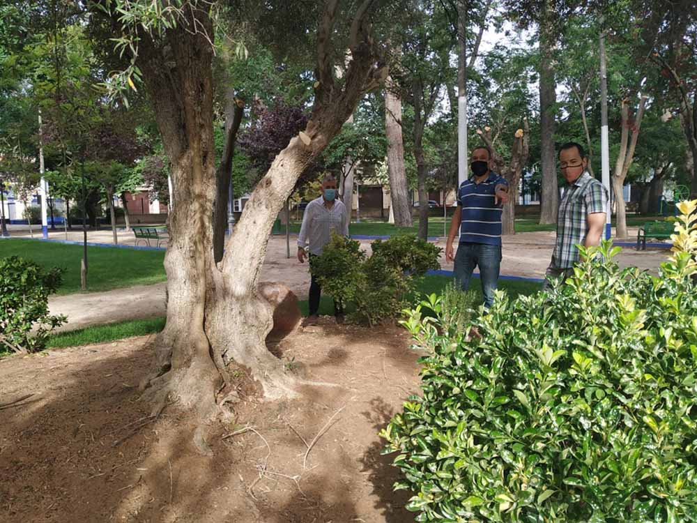 Herencia parque municipal