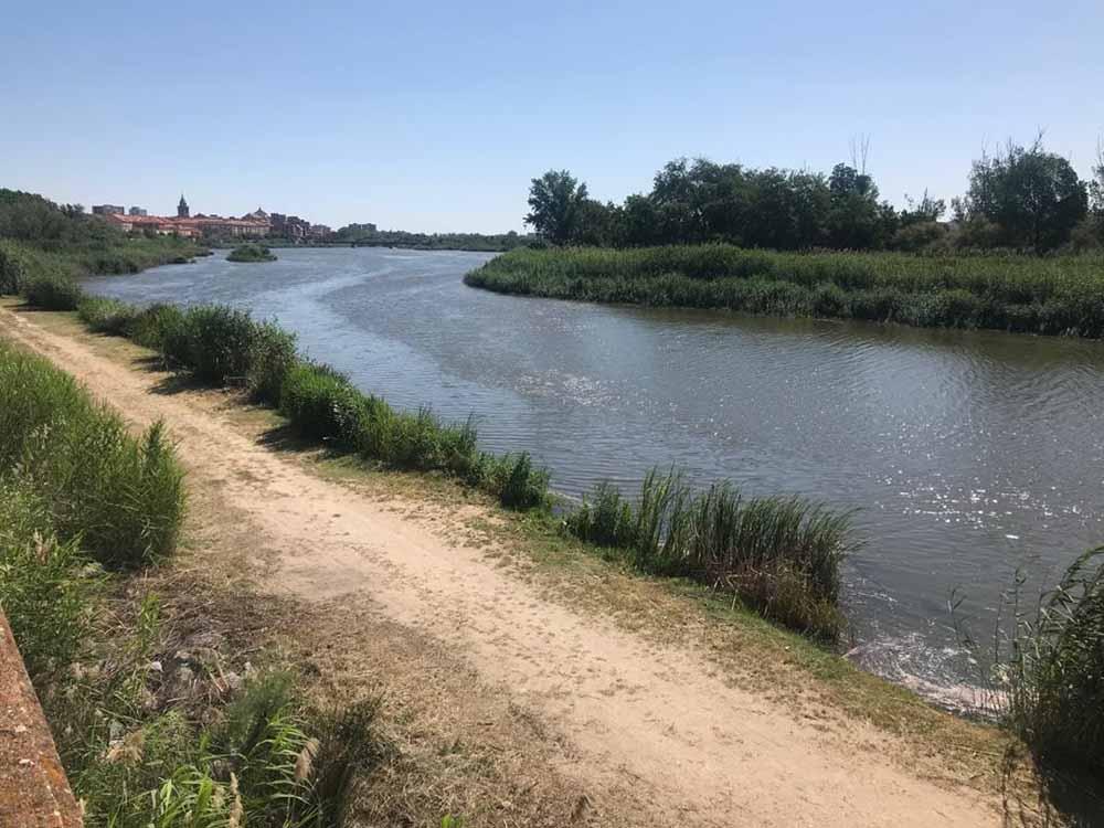 río Tajo Talavera