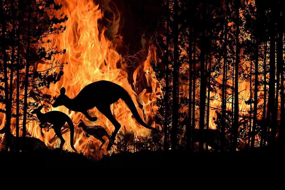 Megaincendio en Australia-baja