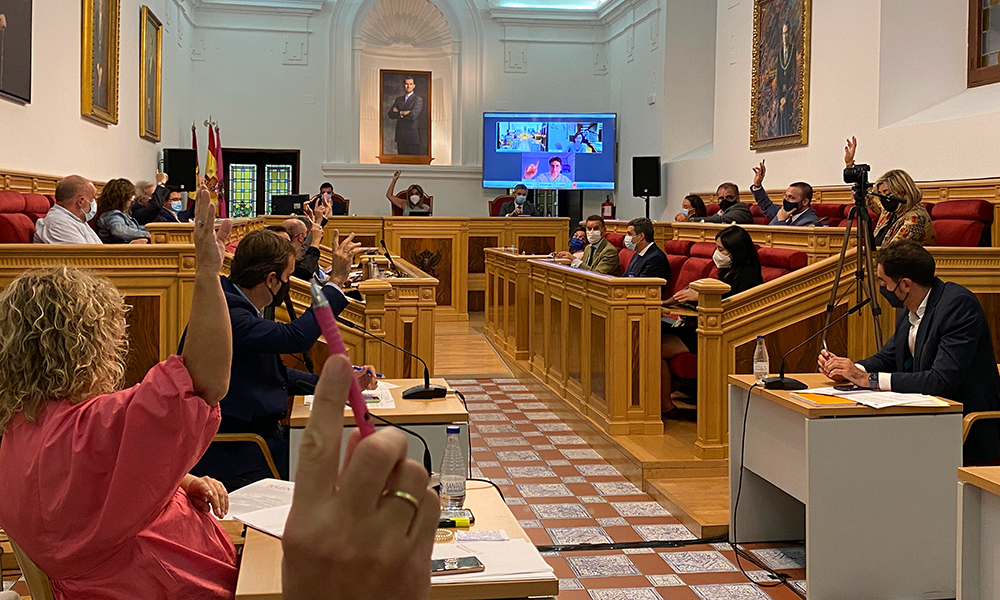 Votacion_programa_alcorques