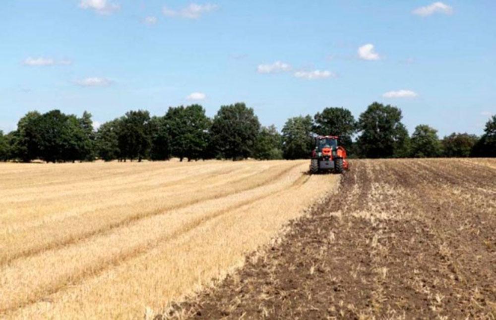 archivo agricultura