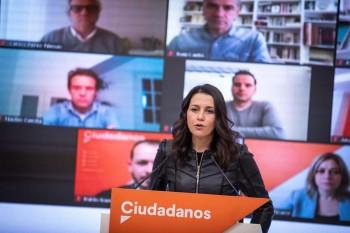 reunión telematica Carmen Picazo con Inés Arriamdas