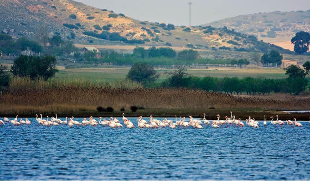 Foto JCCM. Laguna de Pátrola