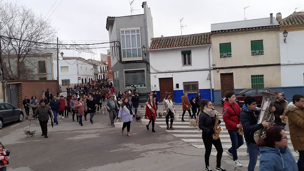 San Antón, desfile