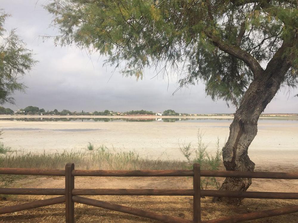 Laguna secas