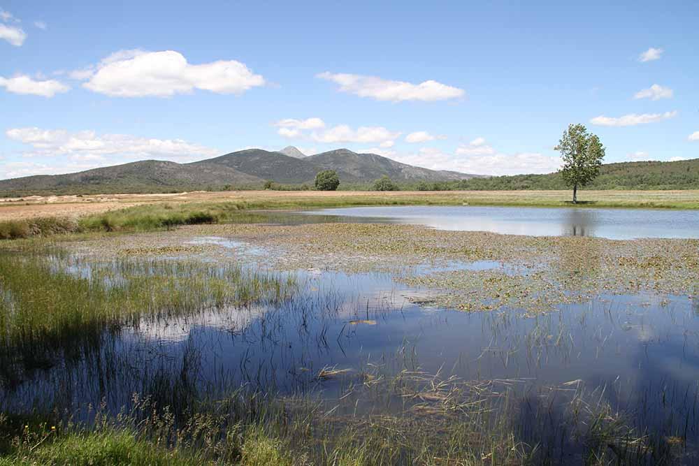 Sierra Norte de Guadalajara