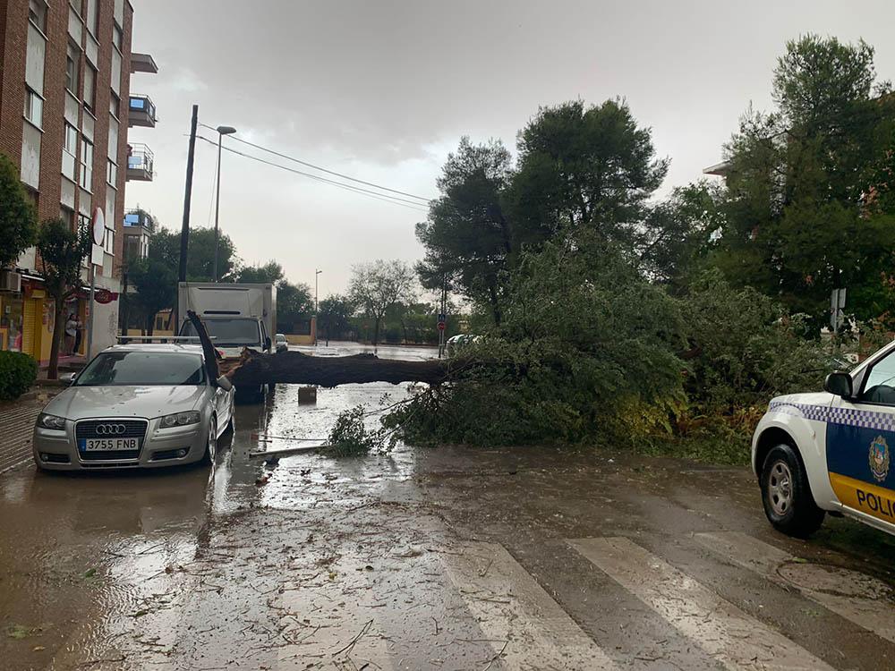 Alcázar daños tormenta2