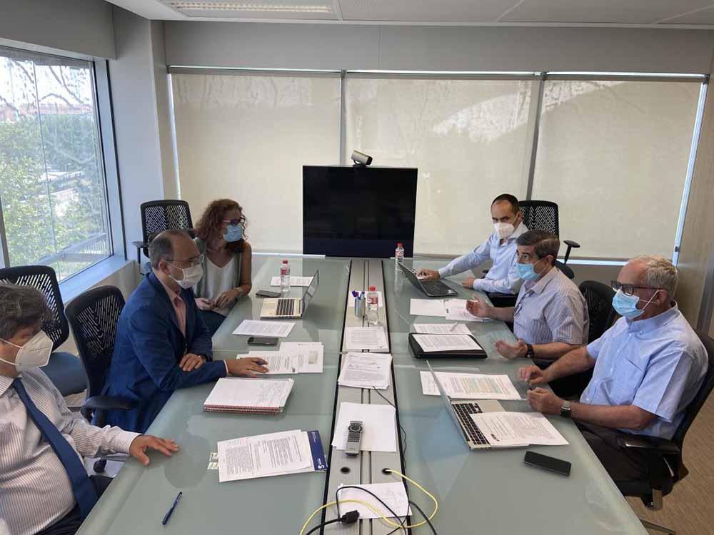 Comite de expertos ICTUS